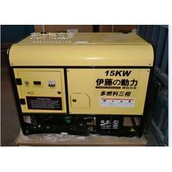 15KW汽油发电机组 低耗油燃气发电机图片