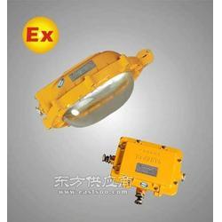 防爆平台灯EBF602-J100W图片