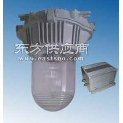 应急平台灯NFE9180-J70/220V图片