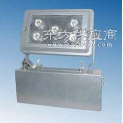 NFE9178固态应急照明灯图片