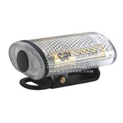 FL4800强光防爆方位灯图片