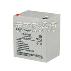鸿贝FM/BB1265T铅酸12V65AH蓄电池最新参数图片