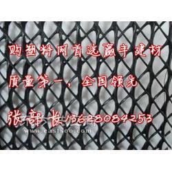 三维土工网施工三维土工网施工单位图片