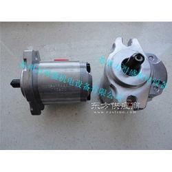 台湾HONOR齿轮泵1AG1P04L图片