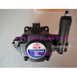 原装现货CML叶片泵VCM-SM-40D-20图片
