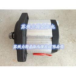 原装现货意大利MARZOCCHI齿轮泵GHP1A-S-13-FG图片