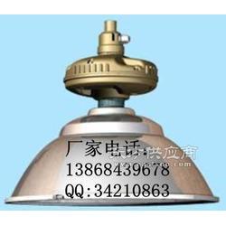 SBF6110-YQL120防水防尘防腐灯图片
