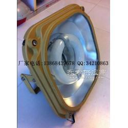 SBF6130-YQL200三防电磁感应灯图片