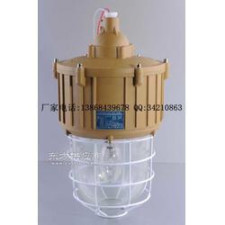 SBF6204-J150C1吸壁式防水防塵防腐燈圖片