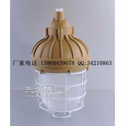 SBF6205-J250防水防尘防腐灯图片