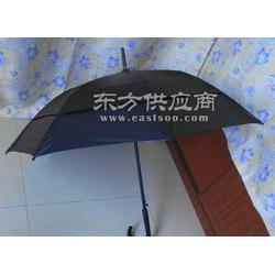 供应创意雨伞图片