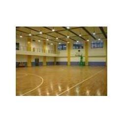 国际品牌建设木地板羽毛球场公司/木地板球场铺设图片
