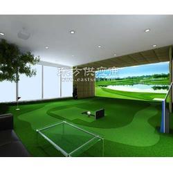 专业建室内高尔夫球场公司/室内球场建设单位图片