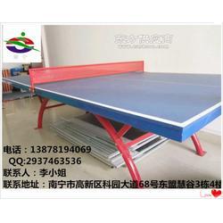 带轮的乒乓球台是多少钱张图片