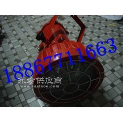 DGS-175/127v矿用防爆投光灯图片