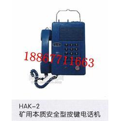 HAK-2本安型防爆电话机图片