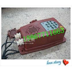 KTT-105本质安全型直通电话机图片