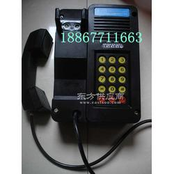 KTH18防爆按键电话机图片