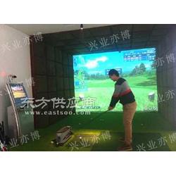 模拟高尔夫 标准型图片