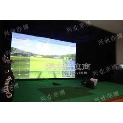 模拟高尔夫专业型图片
