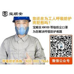供应宝顺安防尘口罩 专业防尘口罩 防尘面罩M3201图片