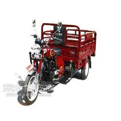 供应大江Daj风暴200 三轮摩托车图片