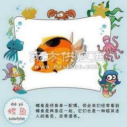 儿童玩具最好玩的新奇玩具厂家优质玩具图片