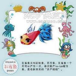 儿童玩具网上玩具新奇创意玩具图片