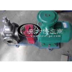 不锈钢YCB1.6-1.6圆弧齿轮泵 现货供应图片
