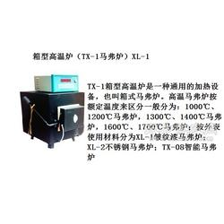 TX-2可编程电脑控温仪图片