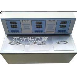FDL-SY三用恒温水槽油槽型号厂家图片