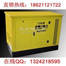 YT15REG15千瓦汽油发电机图片