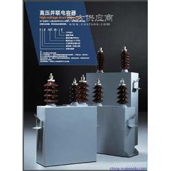 厂家供应BAM11-25-1W国产高压并联电容器图片
