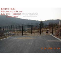 欧式铁艺围栏-TYWL-005订制款图片
