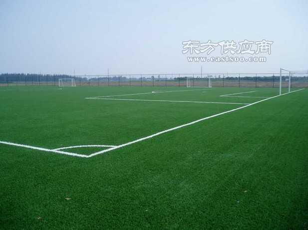 五人制足球场七人制足球场十一人制足球场图片