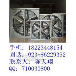 900MM厂房排风扇图片