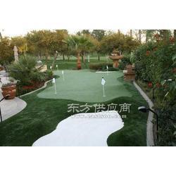 仿真庭院果岭设计 建造 高尔夫工程报价图片