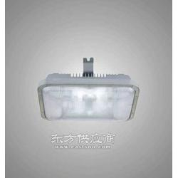 NFC9175低顶灯图片