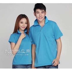 体恤衫品牌品蓝珠的夏装上衣班服数字完美图片