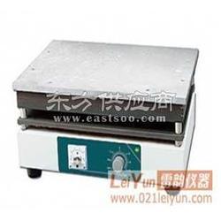 新款BGG-2.4电热板电热板厂家电热板图片