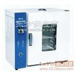 101-0电热鼓风干燥箱生产厂家供应商图片