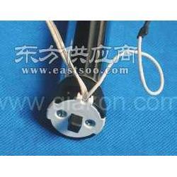 DC25直流管状电机图片