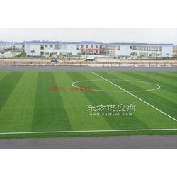 足球场工程整体施工/足球场工程造价供应图片