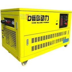100KW沼气发电机型号100GF-TD图片