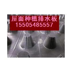 天津排水板|天津排水板作用|天津排水板商图片