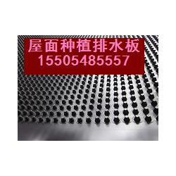 蚌埠专卖排水板,广元排水板, LT500×500×20排水板图片