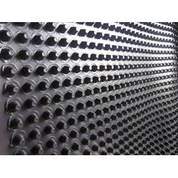 扬州排水板、凹凸排水板销售商、宣城顶板种植排水板图片