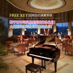 钢琴演奏系统安装|钢琴演奏系统|广州雅迪数码科技图片
