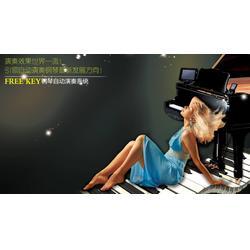 钢琴,freekey钢琴,广州雅迪数码科技图片