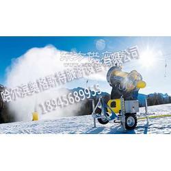 供应MMS造雪机图片